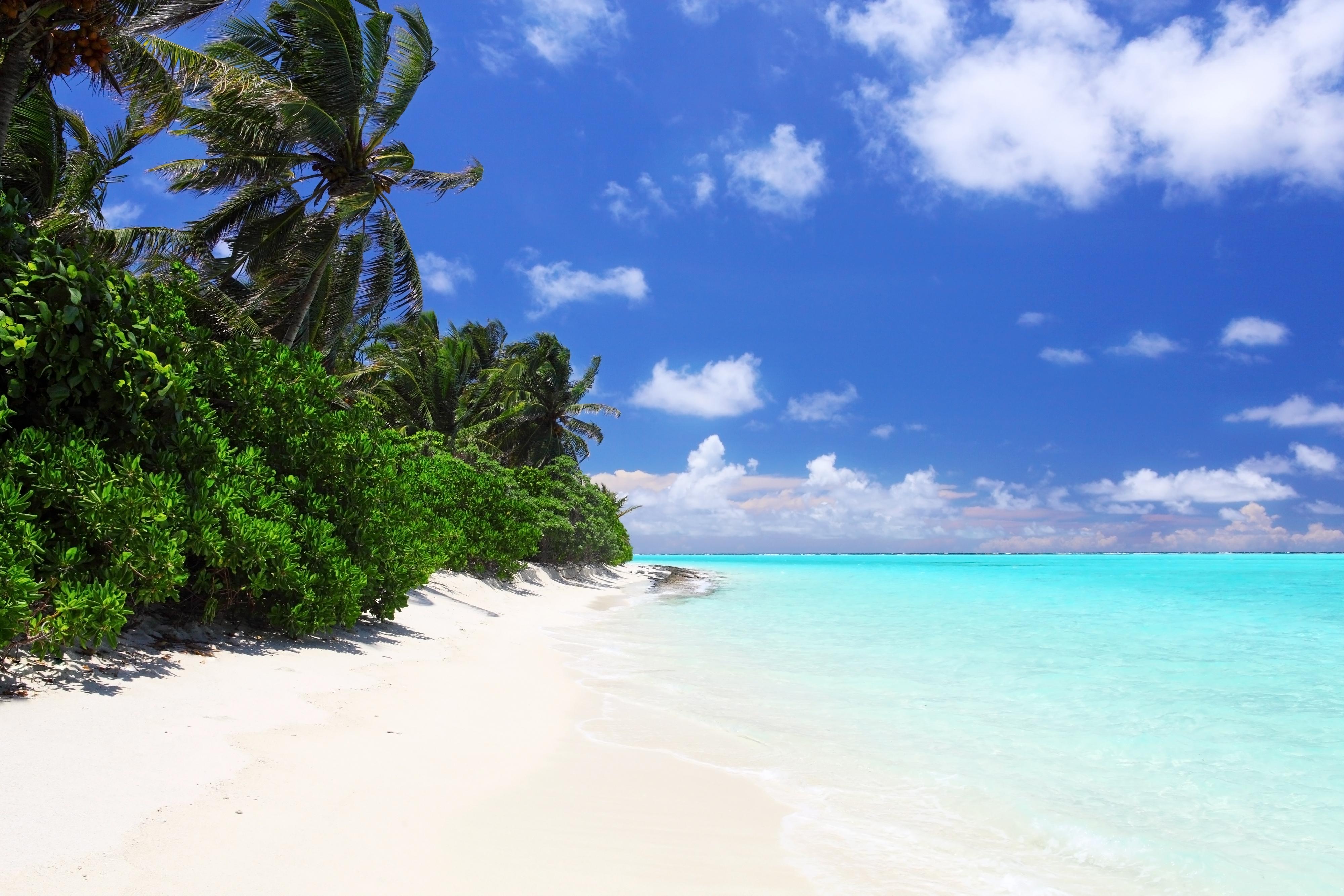 Maldives sex